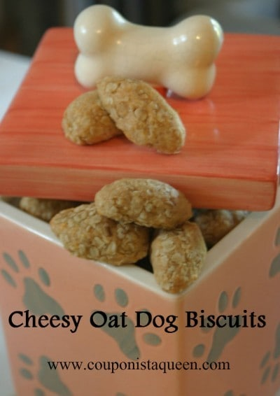 Homemade Dog Biscuit Recipe | Cheesy Oat Dog Biscuits {People friendly also!} image