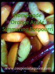 Homemade Orange Apple Simmering Potpourri