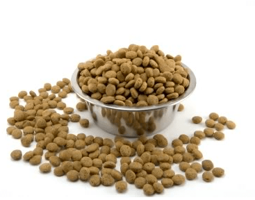 If you are low income, you could qualify for free pet food through Pet Food Stamps image