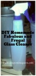 Fabulous and Frugal DIY Glass Cleaner (No Vinegar)