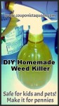 Make DIY Homemade Weed Killer pesticide free for pennies