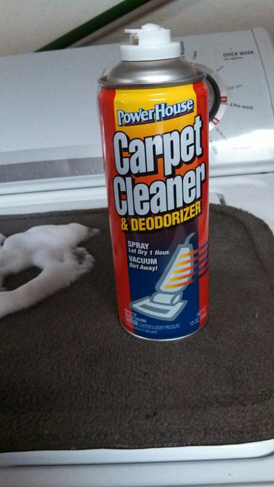 Have you ever wondered?  Dollar Tree Carpet Cleaner, worth it or not?