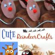 Adorable Reindeer Crafts to Make Now